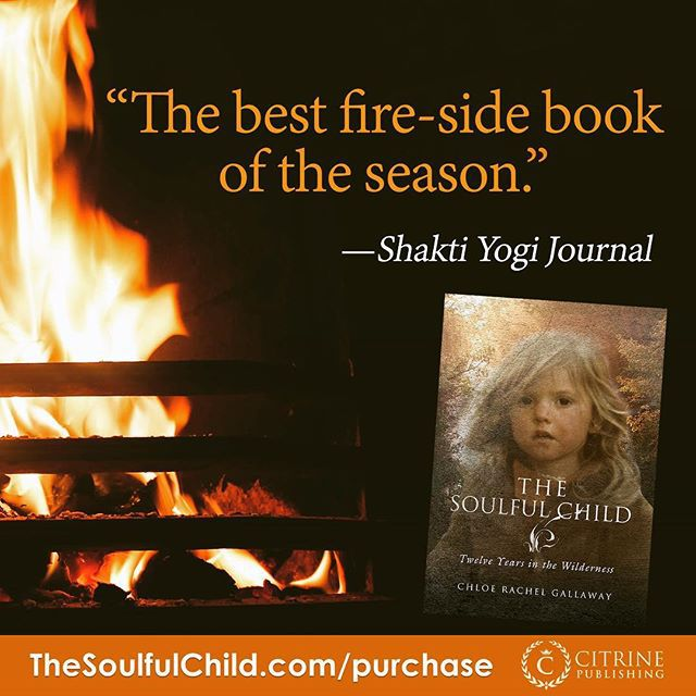 The Soulful Child Twelve Years in the Wilderness Book Reviews - Chloe Rachel Gallaway